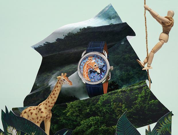 정글의 시간