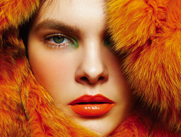 COLOR and THE FUR
